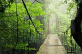 Old suspension bridge in rainforest Tenorio national park Costa Rica