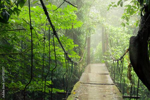 Plakat Old suspension bridge in rainforest Tenorio national park Costa Rica