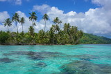 French Polynesia coconut palm trees on the motu Vavaratea and turquoise water of the lagoon, Huahine island, Faie, south Pacific ocean, Oceania - 177058038