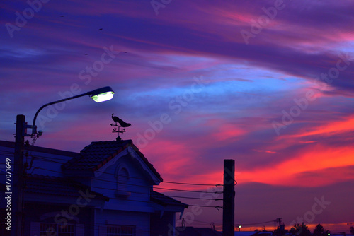 Plexiglas Violet weather vane at sunrise with bright colors in clouds.