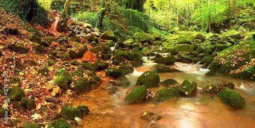 Cascades in rapid stream of mineral water. Red ferric sediments on big boulders © rdonar