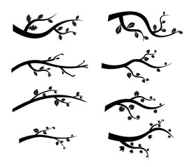 Stylized black tree branch silhouettes on white background. Illustration