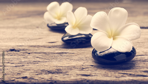 Staande foto Zen Pile of zen stones and Frangipani flower isolated on white background