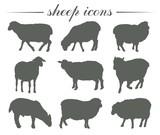 animal husbandry. breeding of sheep. set of vector silhouettes on white - 177091688