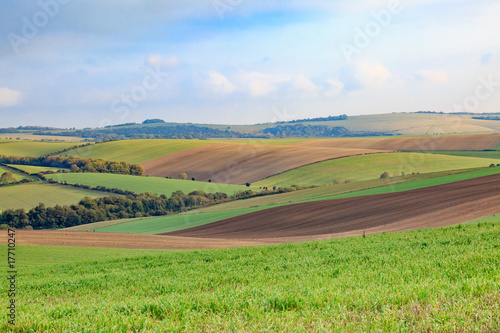 Fotobehang Pistache Sussex Patchwork Landscape