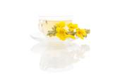 Verbascum, common mullein tea. - 177111412