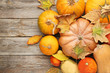 Quadro Orange pumpkins with dry leafs on grey wooden table