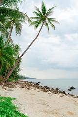 Tropical deserted beach with cloudy sky