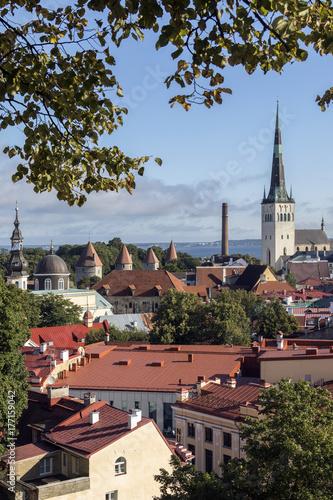 City of Tallinn - Estonia Canvas Print