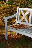 buntes Buchenlaub auf einer alten weißen Holzbank im Garten - 177160275