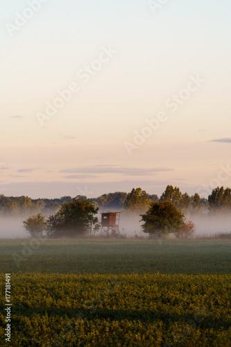 Foto op Plexiglas Ochtendgloren Sonnenaufgang mit Nebel