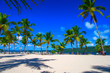 Leinwanddruck Bild - Dominican beach