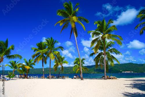 Papiers peints Bleu fonce Dominican beach