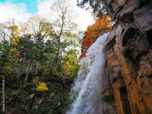 秋の滝 - 177204876