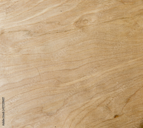 Birch plywood - 177219617
