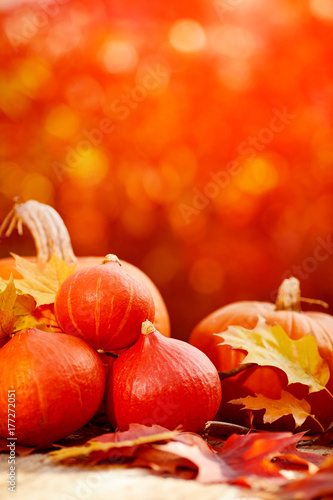 pumpkins on a table with autumn leaves - 177272051