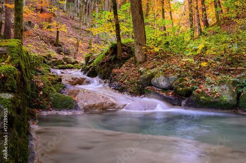 Papiers peints Rivière de la forêt Herbst Idylle im Wald mit Fluss