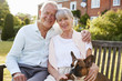Senior Couple Sitting On Garden Bench With Pet French Bulldog