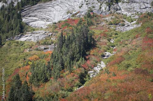 couleurs d'automne canada