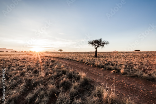 Papiers peints Cappuccino Sunrise Desert Track