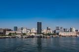 Rio de Janeiro Downtown Skyline with Clear Blue Sky - 177319064