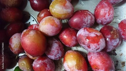 Big plums - 177329084
