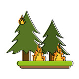 pine tree forest on fire icon image vector illustration design  - 177366697
