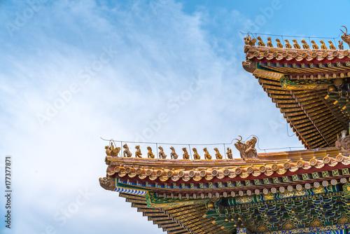 Foto op Plexiglas Peking The palace roof