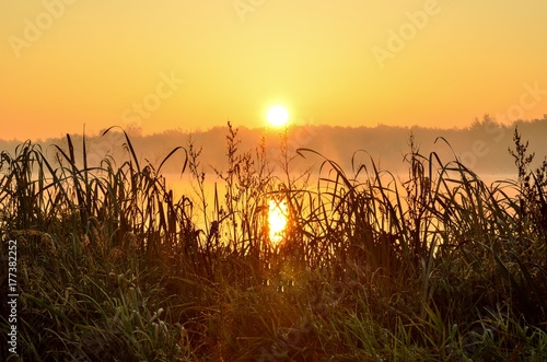 Foto op Plexiglas Bruin Beautiful autumn landscape. Sunrise over the lake.