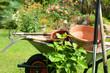 Garten 761 - 177392874