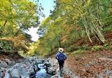 秋・渓谷を歩く - 177399239