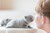 Cute little cat and woman rubbing noses. - 177438606