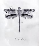 Monotype dragonfly black - 177457078