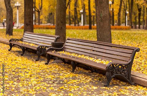 Keuken foto achterwand Herfst empty bench in park