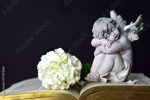 Angel and white flower Poster