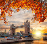 Tower Bridge with autumn leaves in London, England, UK - 177473241