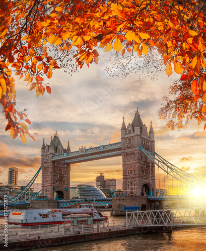 mata magnetyczna Tower Bridge with autumn leaves in London, England, UK