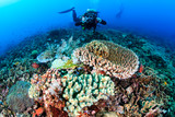 SCUBA diver with a camera swimming over a colorful, healthy, tropical coral reef - 177476080
