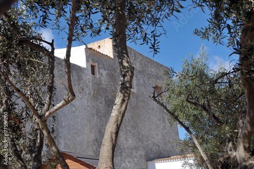 Kirche von Sant Francesc de Formentera Poster