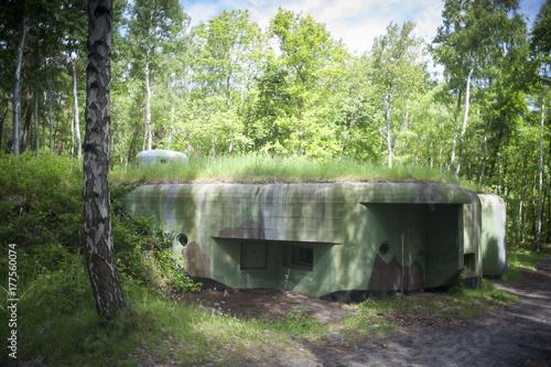 bunkier w lesie