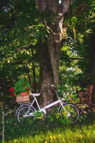 Fotobehang Fiets Apple farm