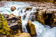 The turbulent water of the Sunwapta River as it tumbles down Sunwapta Falls in Jasper National Park in the Canadian Rocky Mountains