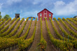 Red Farmhouse on top of a Hill in Healdsburg, California.