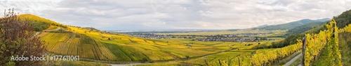 Papiers peints Vignoble Vignoble alsacien à l'automne, Ammerschwihr, Kientzheim, Kaysersberg Vignoble, Sigolsheim, Alsace, Grand Est, France