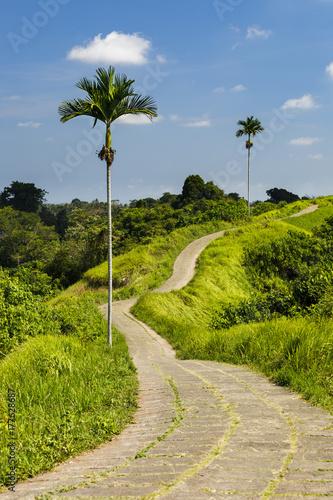 Papiers peints Bali Wandern in Bali - Ubud - Campuhan Ridge Walk mit blauem Himmel