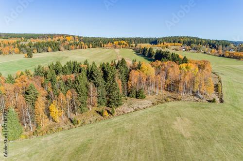 Foto op Canvas Pistache Autumn in Sumava, National Park, Czech Republic