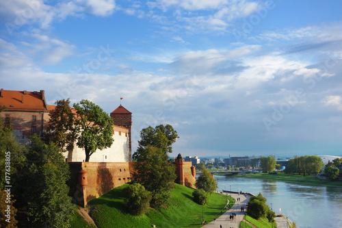 Foto op Plexiglas Krakau The Wawel Castle