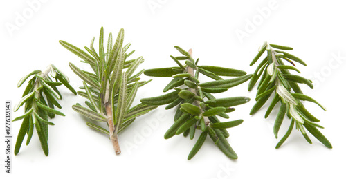 rosemary isolated on white плакат