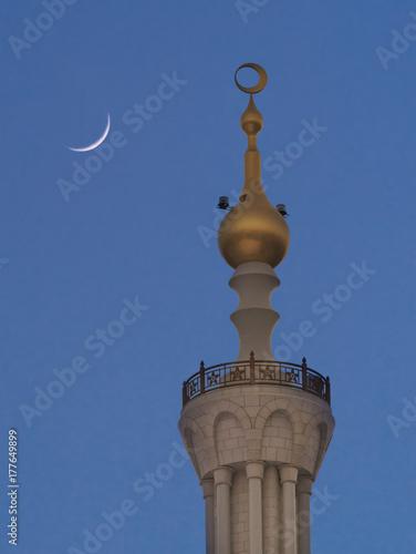 Foto op Plexiglas Abu Dhabi Minarett der Sheikh-Zayed-Moschee in Abu Dhabi
