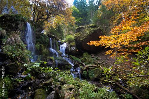 Fotobehang Grijze traf. Wasserfälle bei Le Mont Dore in der Auvergne